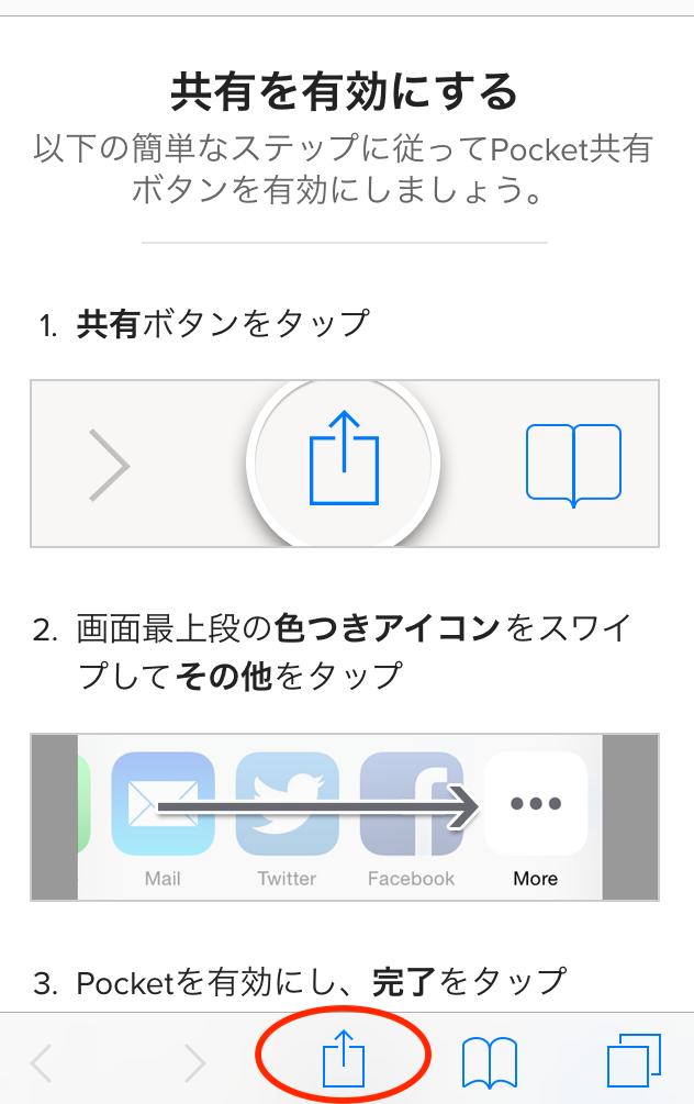 Pocket設定画面3